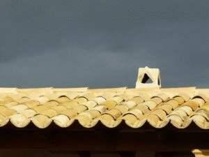 dachy mnich
