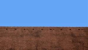 pokrycia dachowe karpiówka rustykalna