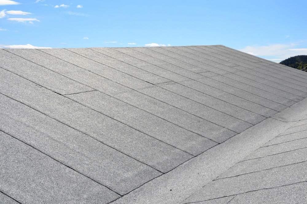 papa na dach warszawa